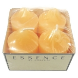 Wax Lyrical Mango Roomscenter Votive Candles Pack of 4 (72 Packs)